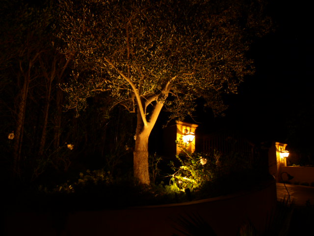 Lighting Thousand Oaks Landscape Lights